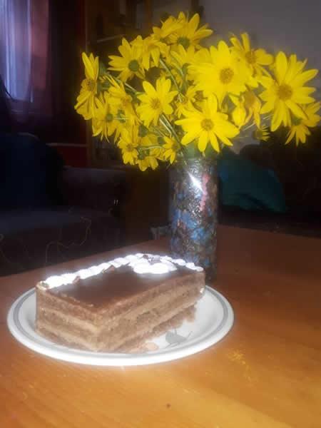 Nenina čokoladna torta