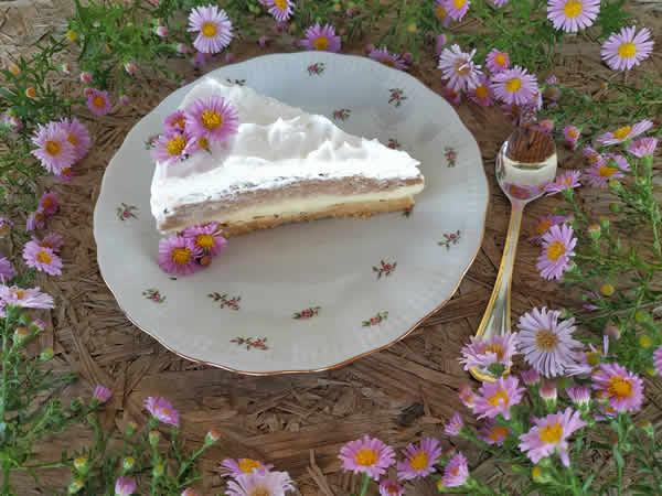 Puding torta sa mlevenim keksom